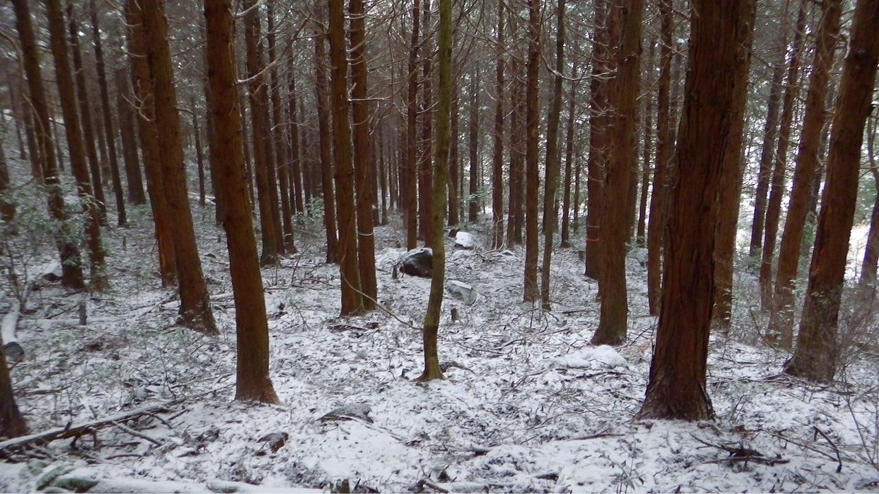雪の俵山は、今年も寒かった 2017_1