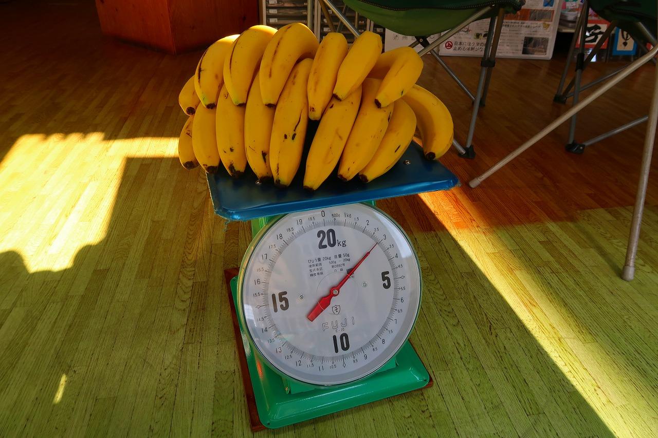 松田バナナは、うまいのだ。