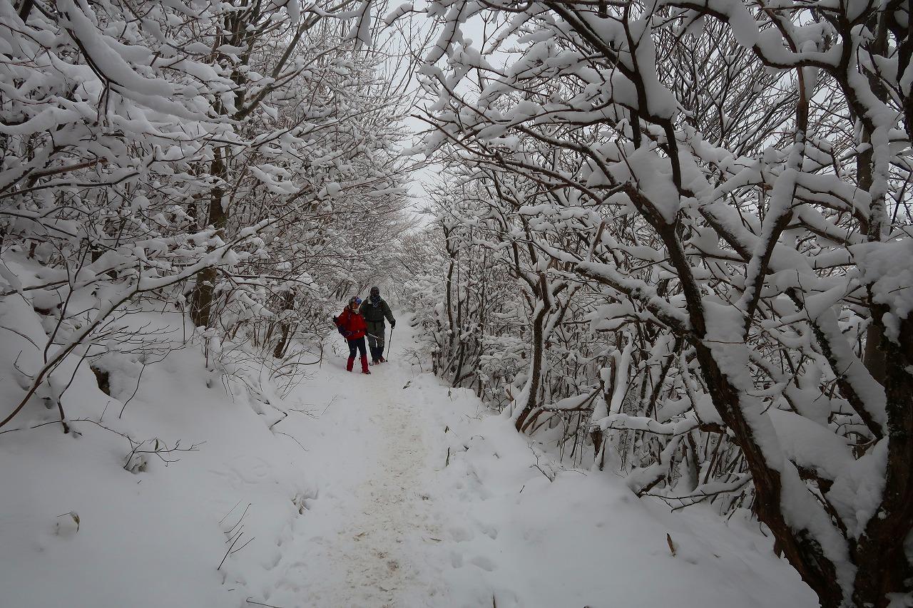 雪のくじゅう