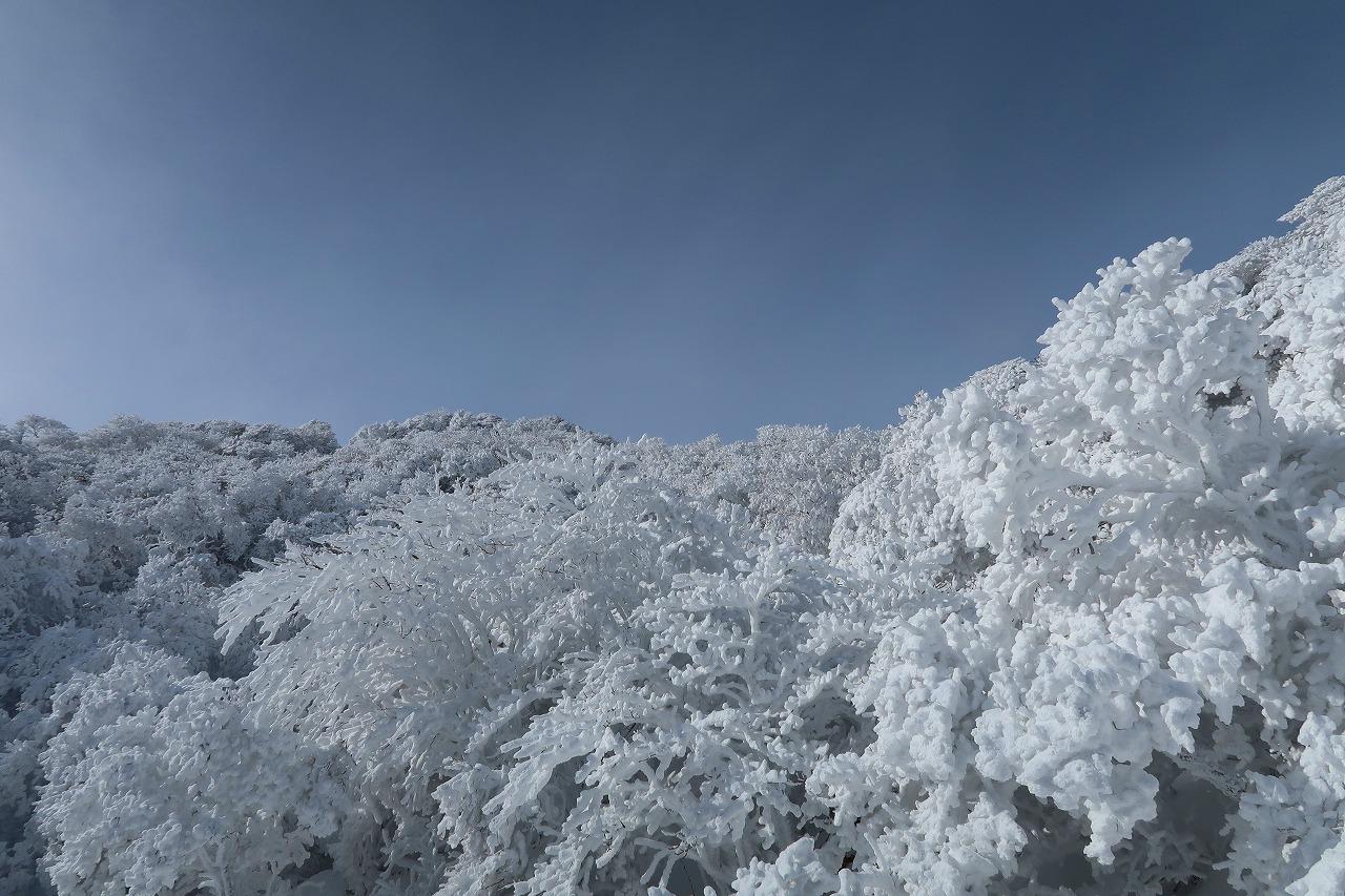 大船山の氷結御池にて