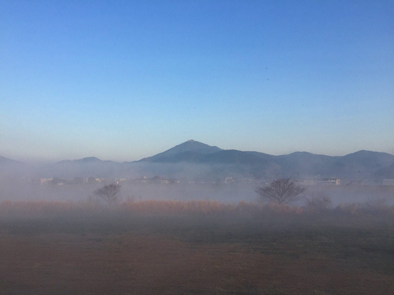 今朝の金峰山 霧で幻想的なのだ。
