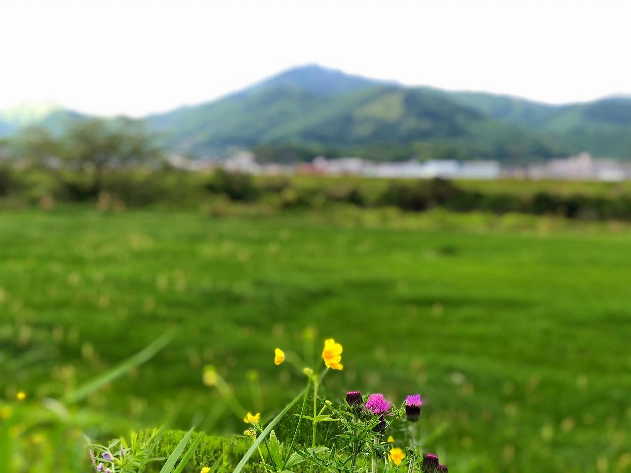 2018.4.25今朝の金峰山