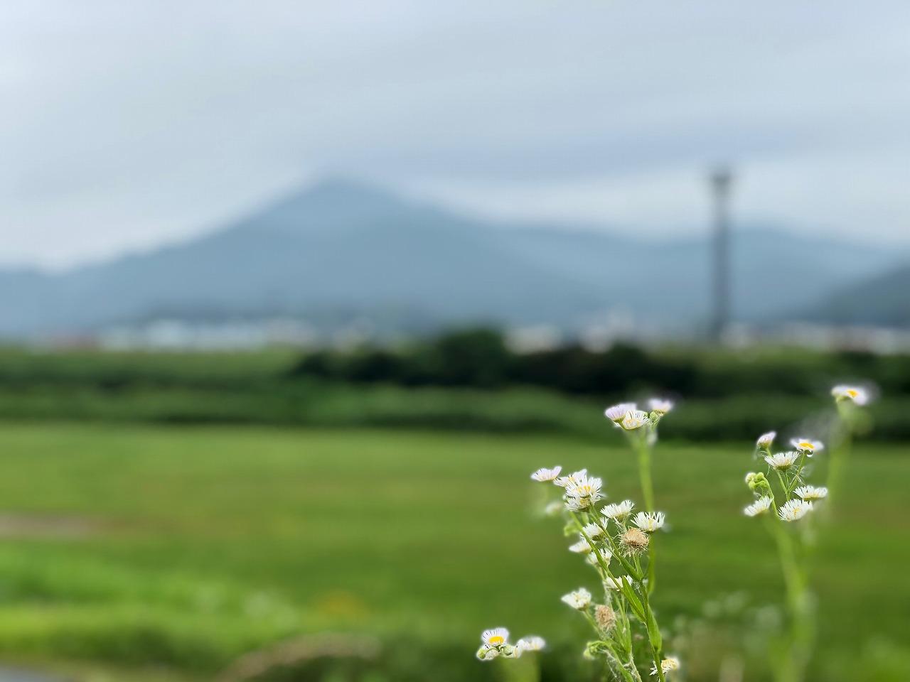 2018.6.7今朝の金峰山です!