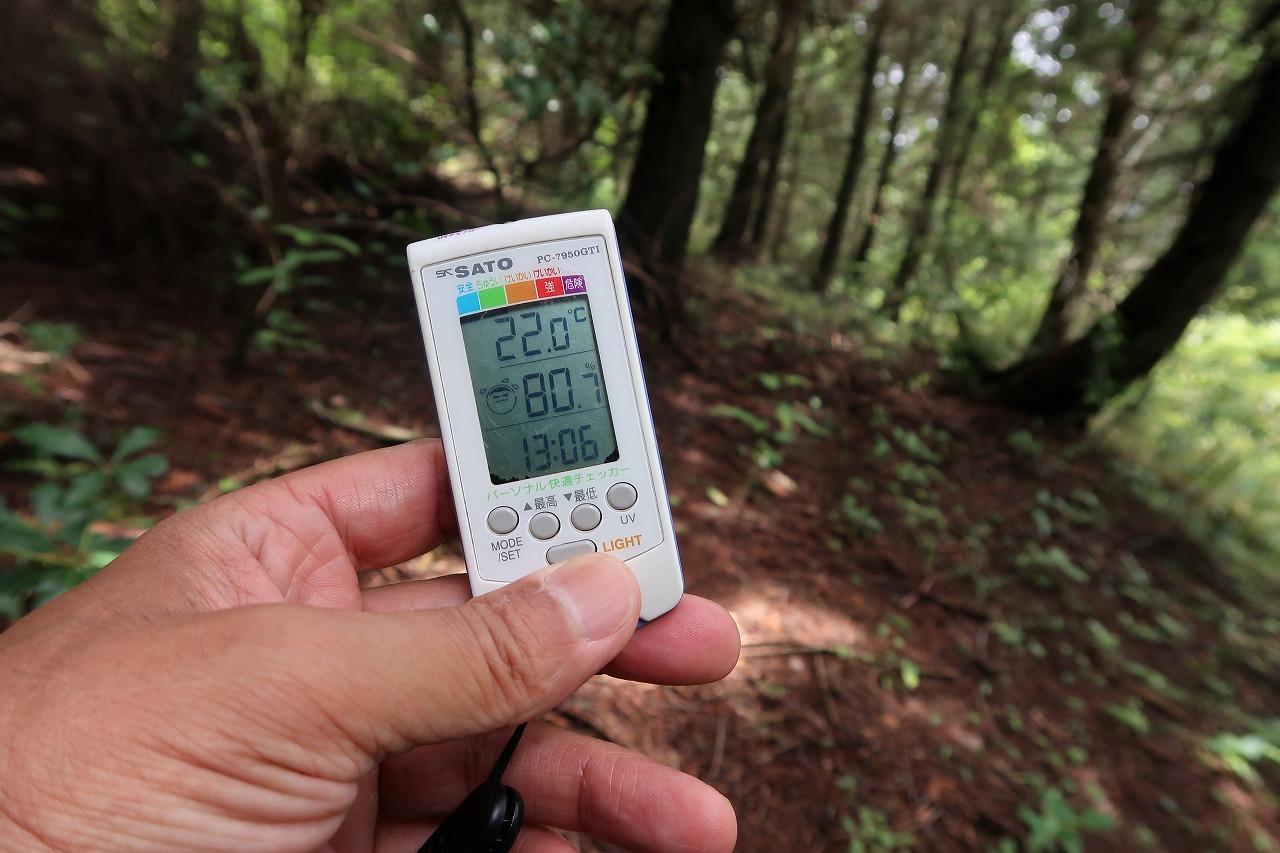 南阿蘇外輪山 俵山の人工林の中の温度と湿度
