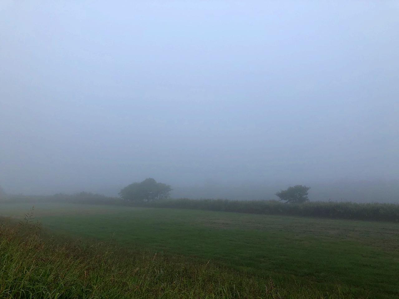 2018.10.24今朝の金峰山です。 霧で何もみえません。。