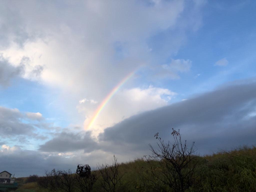 小さな虹だ!