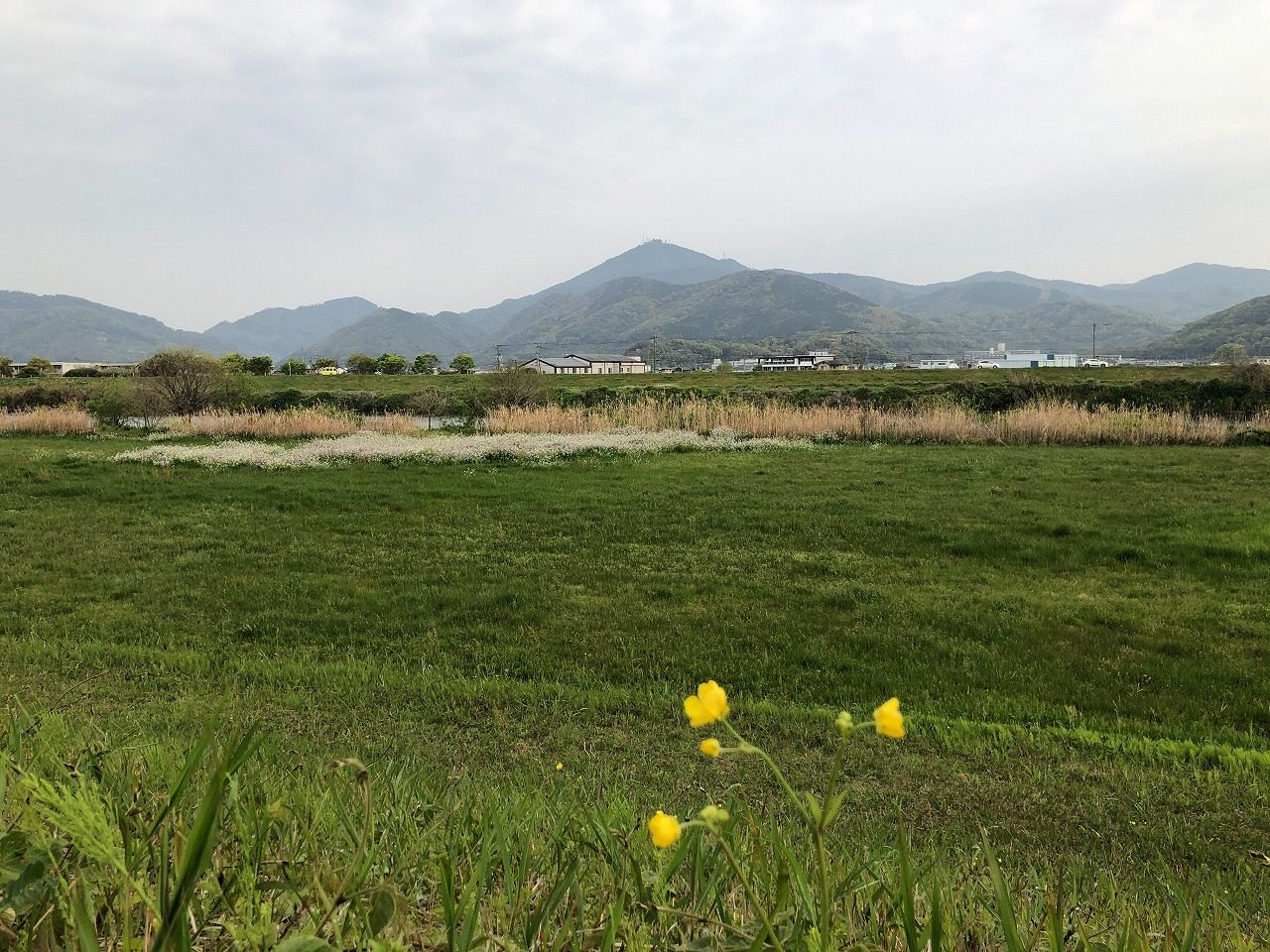 2019.4.9今朝の金峰山です。