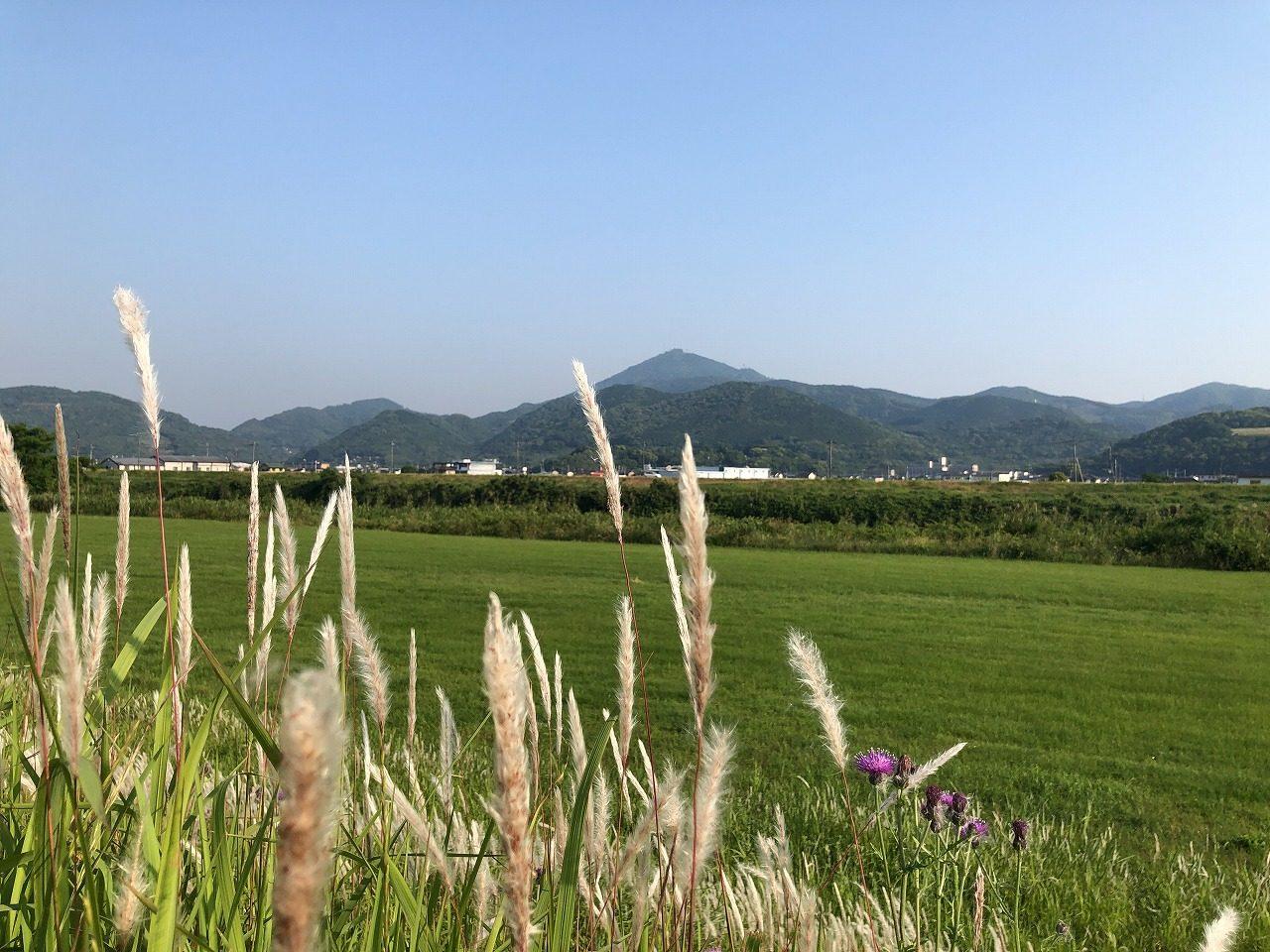 2019.5.24今朝の金峰山です。