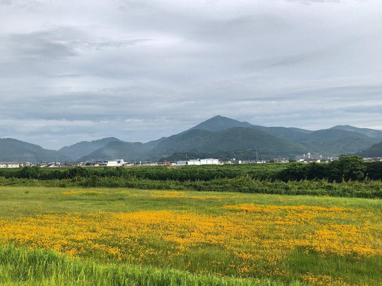 2019.6.25今朝の金峰山です。