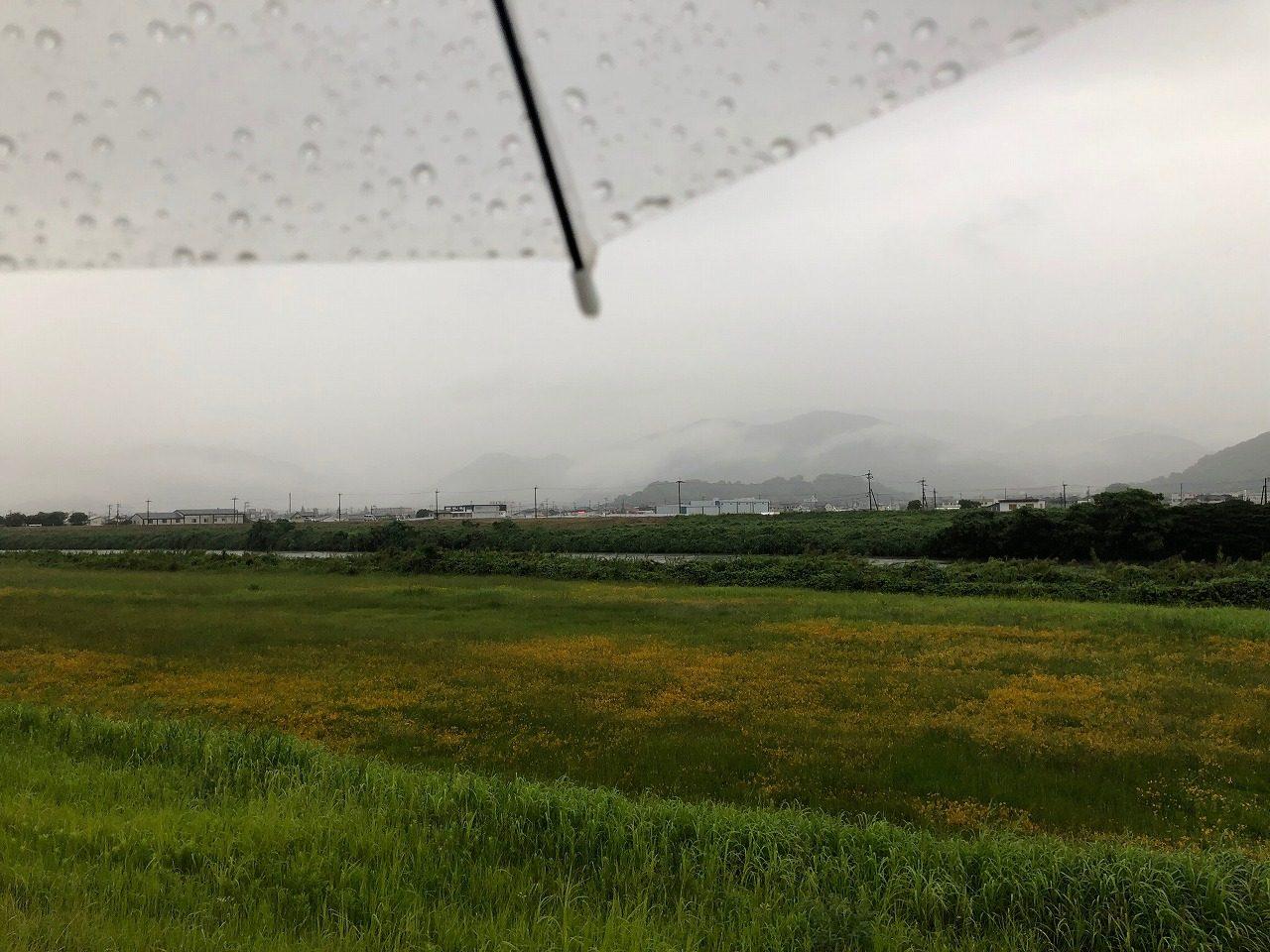 2019.6.28今朝の金峰山です。