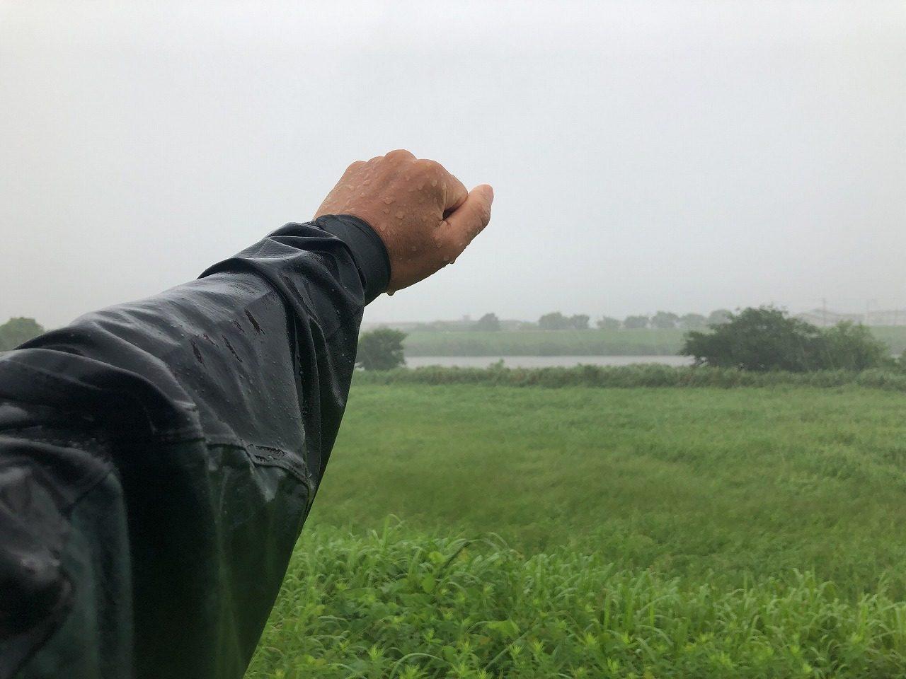 2019.7.22今朝の金峰山