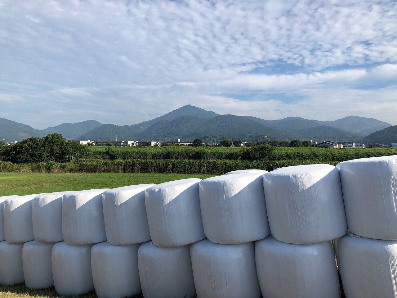 2019.8.7今朝の金峰山です。