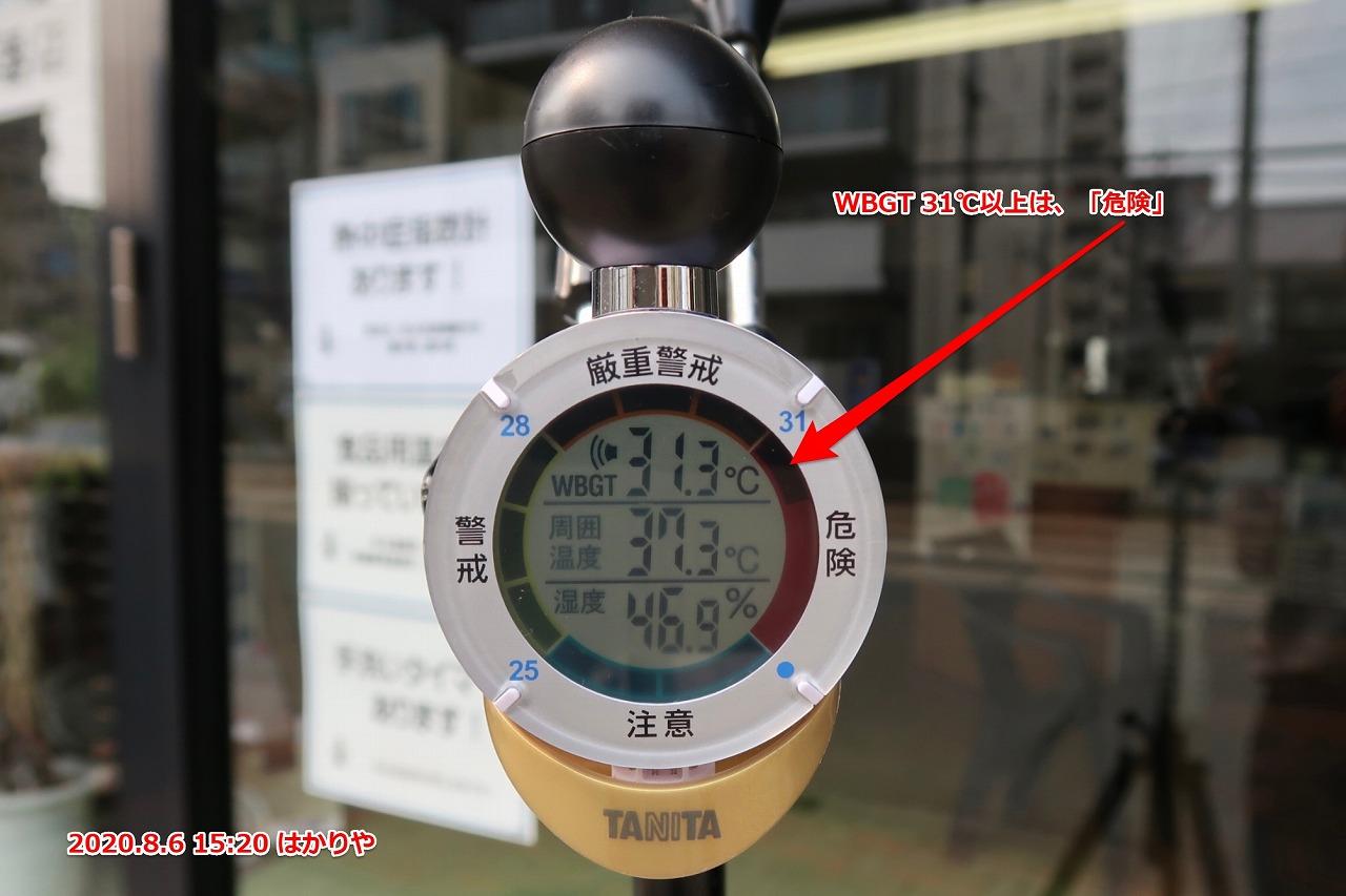 TT-562 黒球式熱中症指数計 2020.8.6