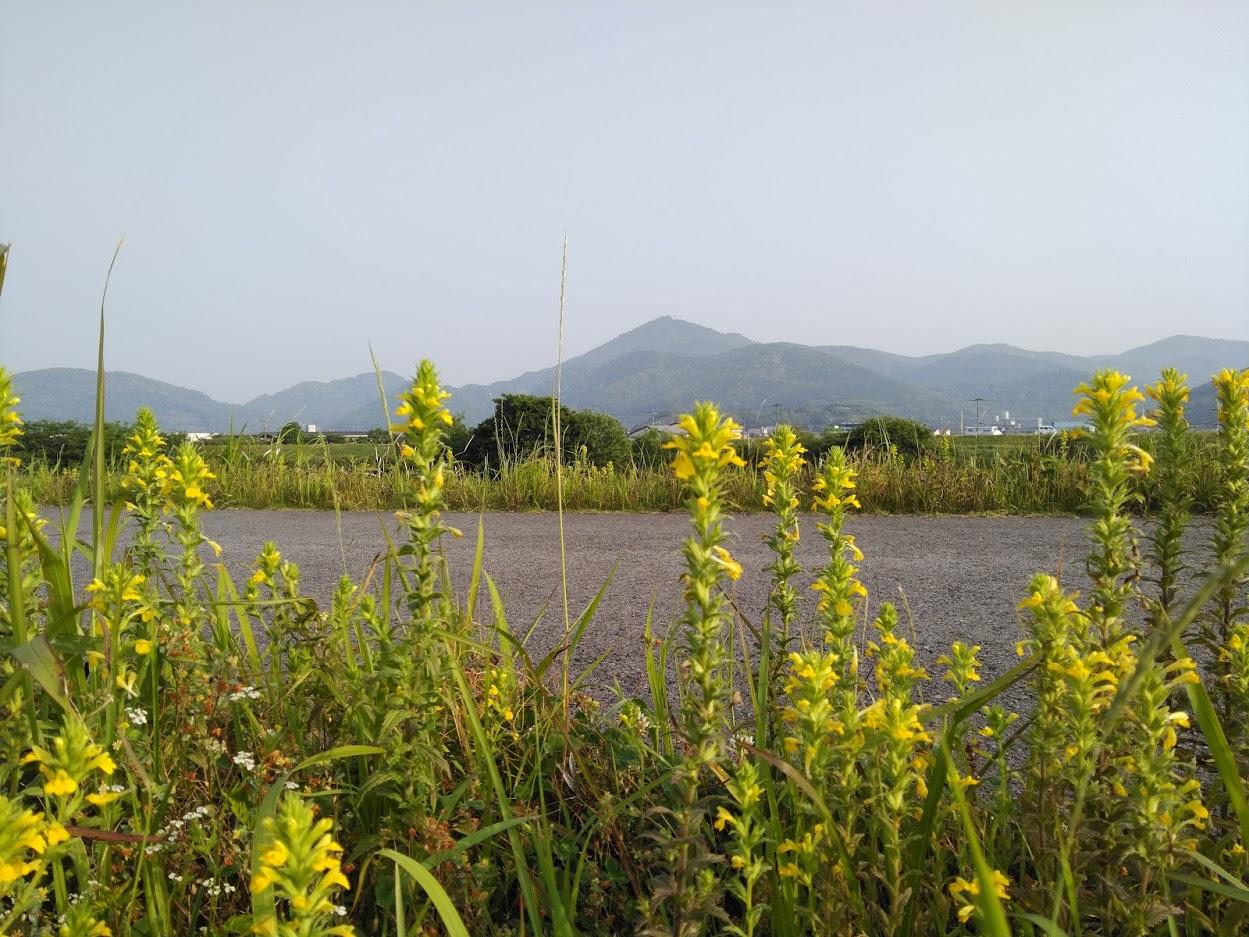 2021.5.10今朝の金峰山です。
