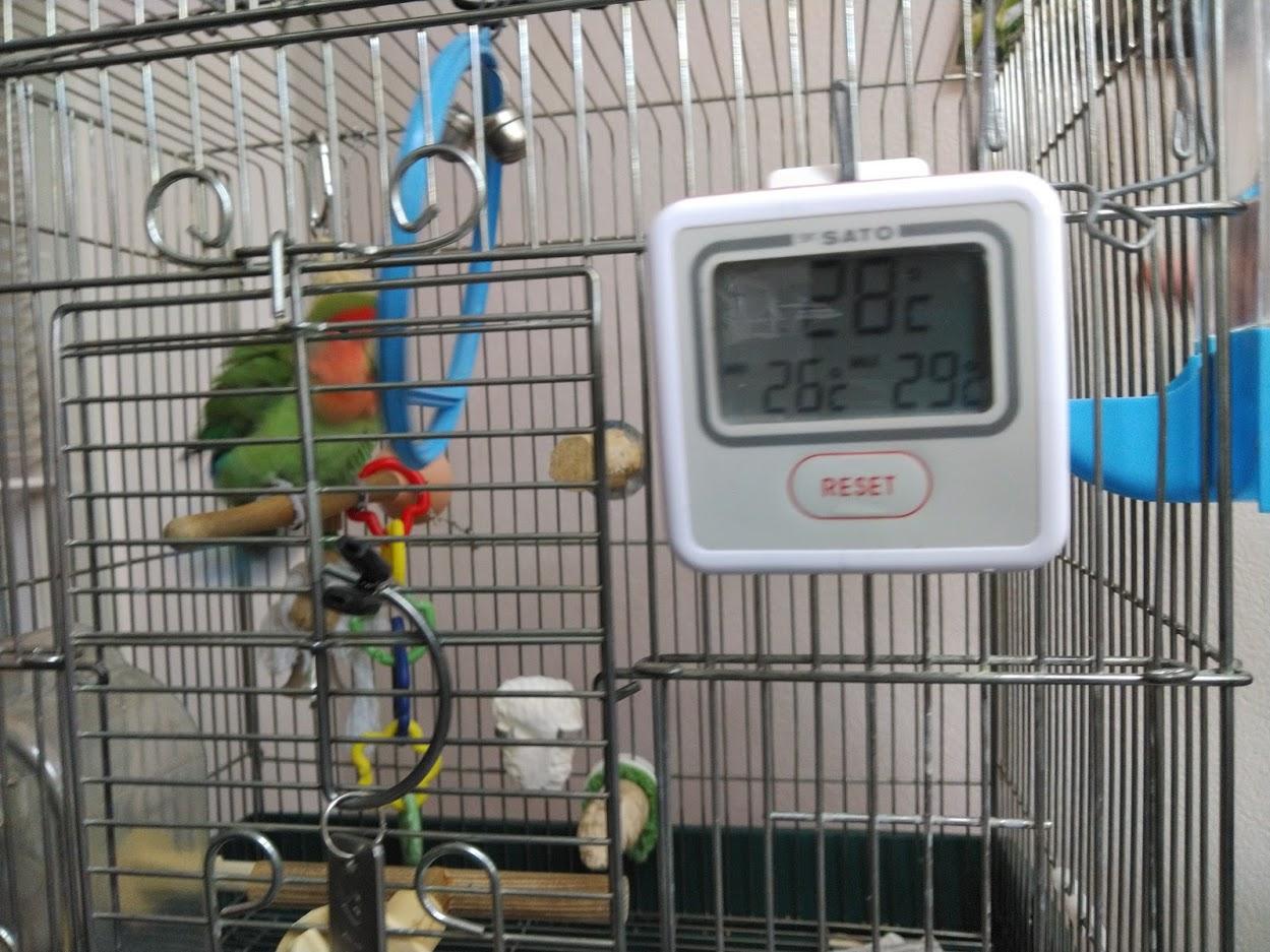 PC-3500最高最低温度計
