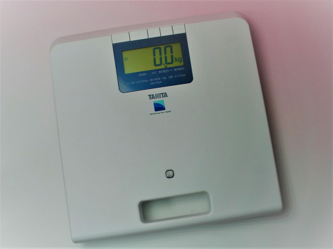 業務用デジタル体重計WB-260A